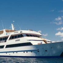 M/Y Galapagos Sea Star Journey | Galapagos Cruise Ship