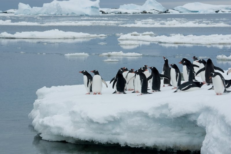 Antarctic circle Travel